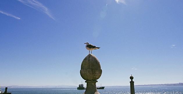 Ταξίδι στην Πορτογαλία